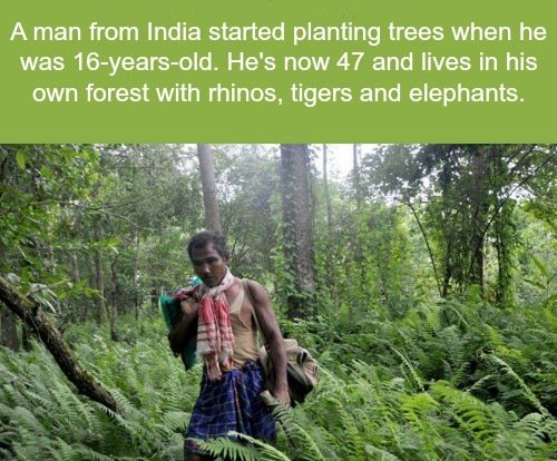 India Man Plants Forest Bigger Than Central Park to Save His Island: https://t.co/Bc8hCaeRGY