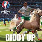 And now we know who took the horse to France. #IRLFRA #COYBIG #Brady https://t.co/JZ80nCVNzQ