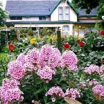 Check out past #Kitchener in Bloom winners: https://t.co/VcFXxXFx1B  Nominate someone today! https://t.co/yIwfd0XudR https://t.co/tRrsCZCULo