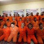 #الفلوجة_تحررت هؤلاء سعوديون كانوا يقاتلون في الفلوجة يساعدون داعش بقتل الأبرياء بينما آل سعود يقتلون الناس بلا ذنب https://t.co/JsLolR8vLN