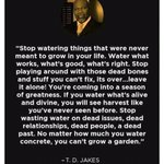 #IfYouKnew what is good for your future cultivate it more https://t.co/YBwS7ifHRT
