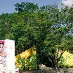 Gracias @parquelaceiba por permitirnos realizar el taller en sus instalaciones. #FestFE2016 #RevoluciónEcléctica https://t.co/EyyWiH7NfH