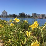 Another beautiful day in #Oakland @Oakland @OaklandHub #bayarea ???????? https://t.co/hqrdWZUAP0