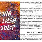 HUGE NEWS! We are hiring!! Want a #LUSH new job? This is how to apply (closes 03 July) Pls RT #Bristol! https://t.co/M6ZS2REfUm