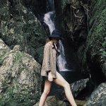 Rainforest wandering with @lowkeywillowtree to find hidden gems ✨#exploreTNQ https://t.co/JVScRylzHp