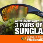 To celebrate #NationalSunglassesDay, we teamed up with @wileyx to giveaway 3 pairs of #sunglasses! RT to win! ???? https://t.co/hMjOAKTgc0