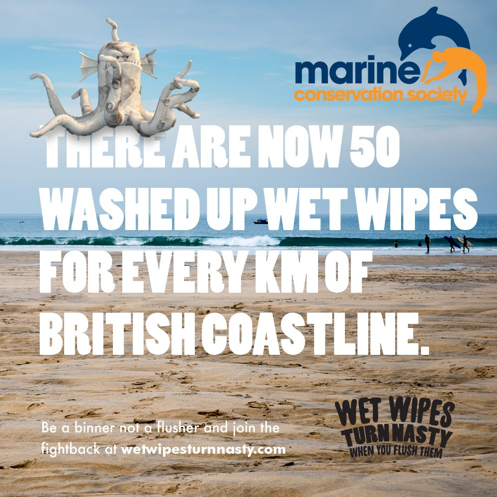 Stop wet wipes being flushed. Sign our petition for better labeling. Bin not bog  https://t.co/exrZuwhXXF https://t.co/dwm0GEgYRc