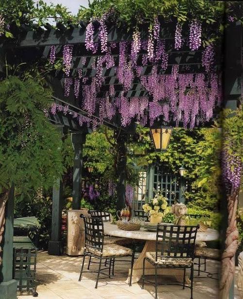 small garden Ideas -pergola with wisteria - #gardens #gardening #garden...