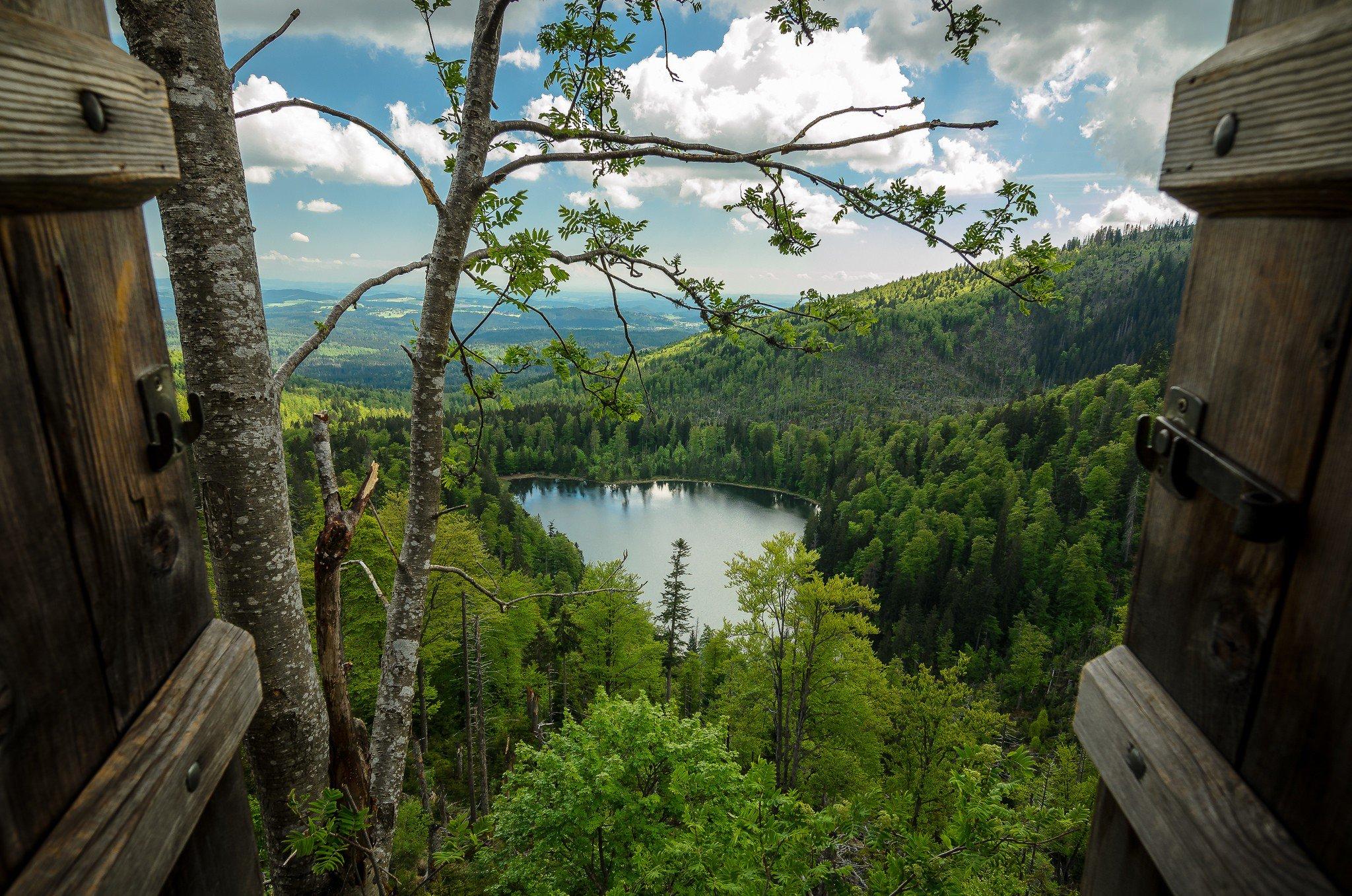 природа озеро дом лес деревья  № 2447949  скачать