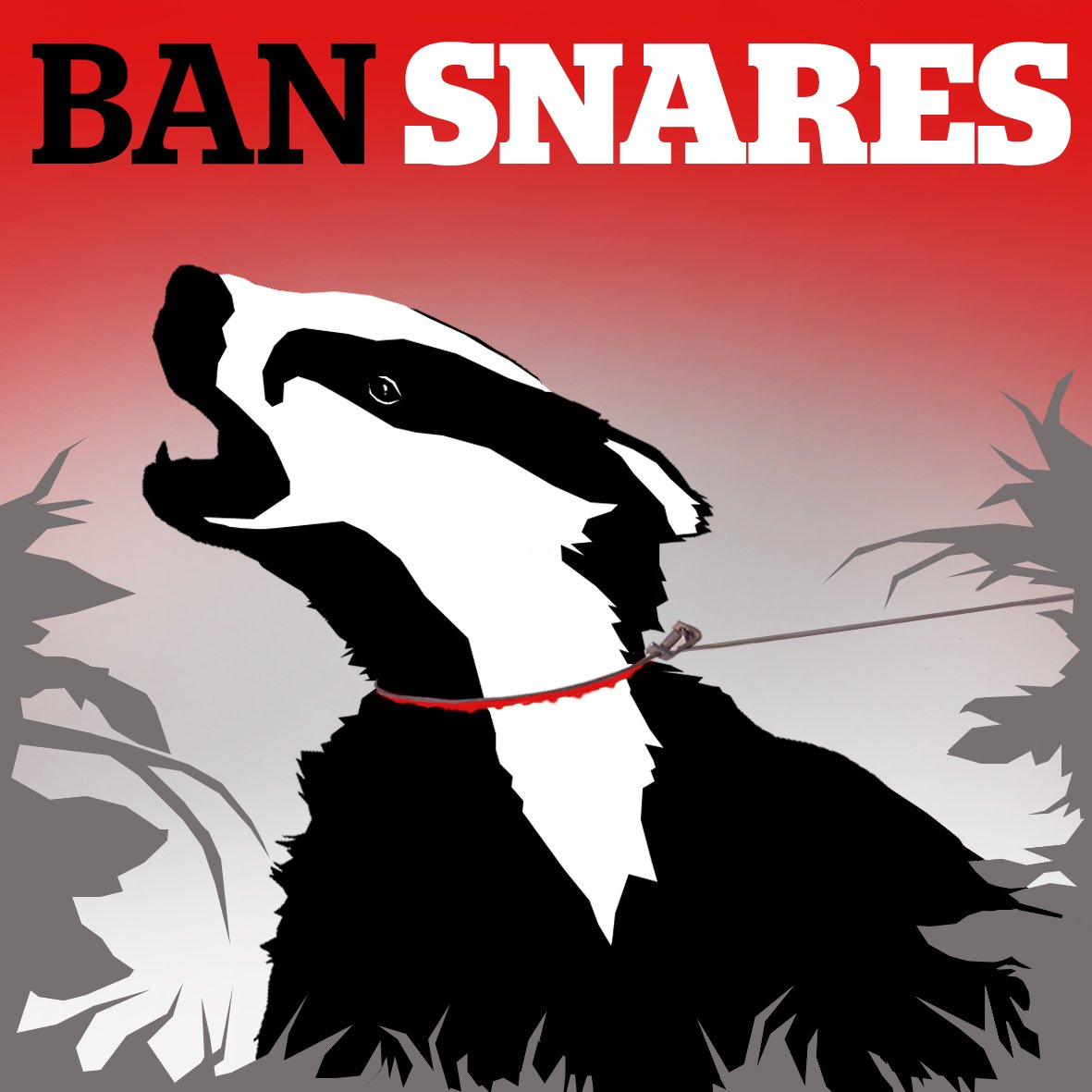 With 1.7 million animals caught every year, it's time to #BanSnares https://t.co/CXHWZIzIsP https://t.co/07j3P7wpwr