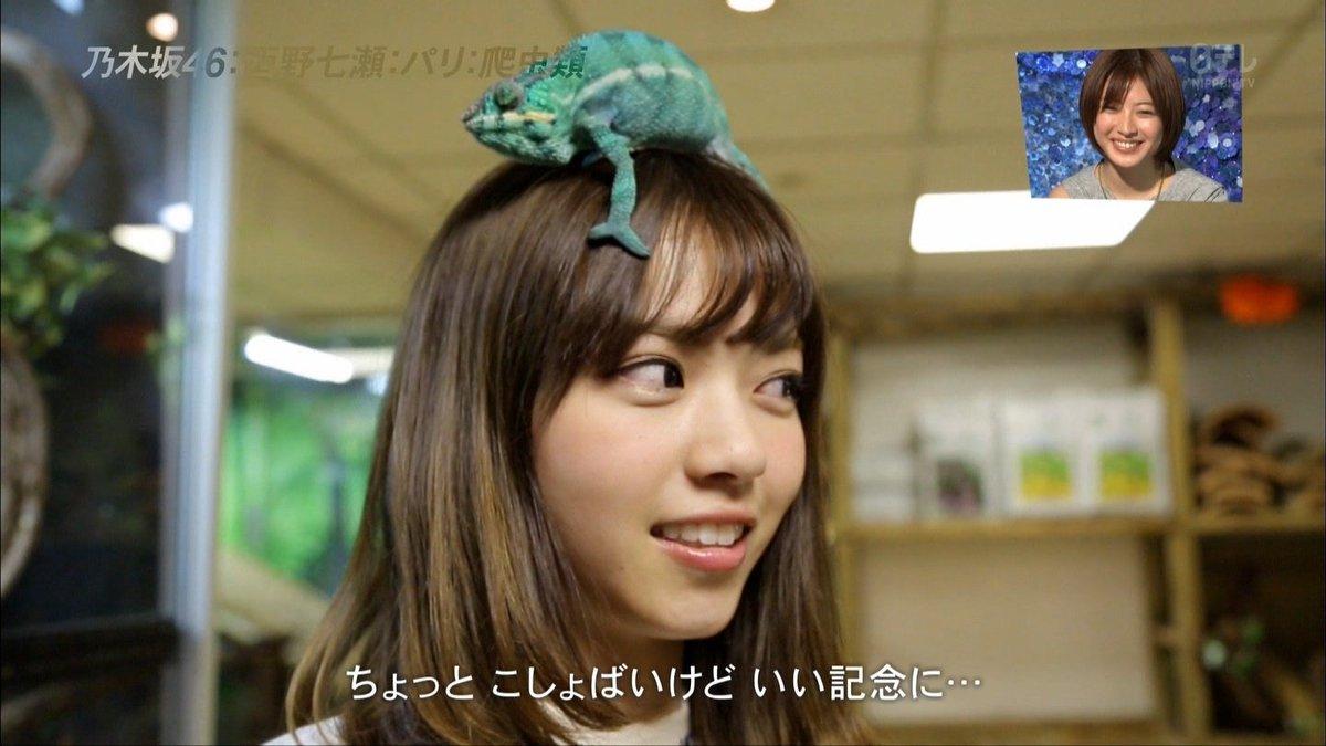 乃木坂46と(元)AKB48、戦ってるフィールドが違いすぎる。 https://t.co/YUg8b3AIPQ