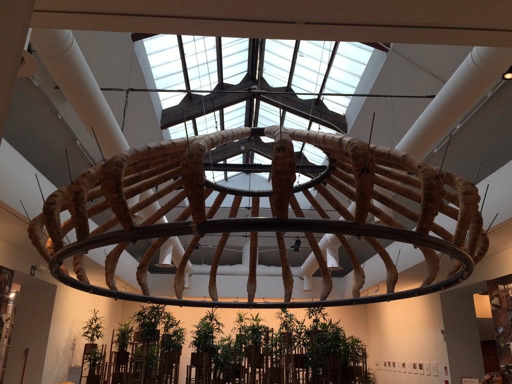 Best-smelling entry in Aravena's @la_Biennale: Simon Velez's bamboo  canopy and models: https://t.co/6P4YdCM7RU