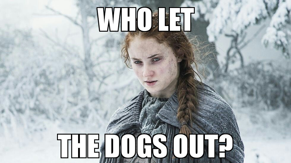 Who let the dogs out?  #Sansa #GameofThrones https://t.co/4kGZOXeAiq