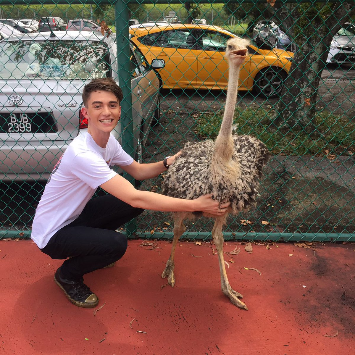 Cheekaboo has gone international... Greyson Chance just had to meet him  #GreysonInMalaysia https://t.co/o8Q1RSLWFy