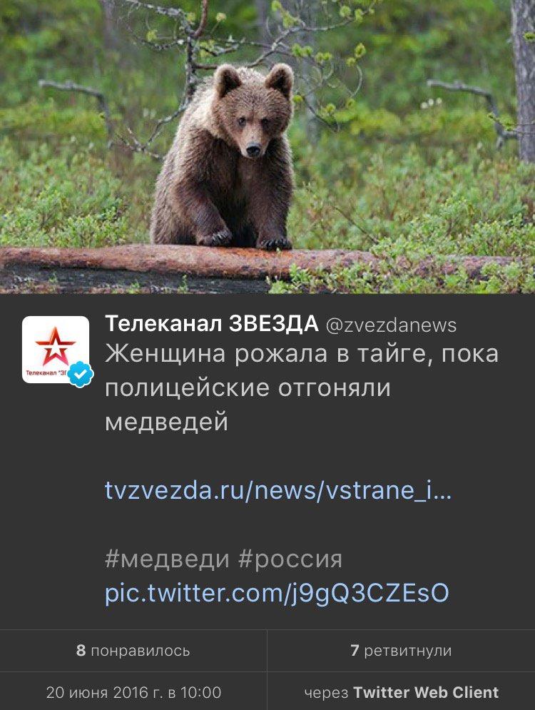 Беременная девушка родила в лесу пока полицейские дрались с медведем 92