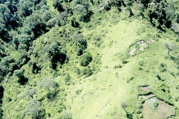 Deforestation gobbles up Sh6b from water resource