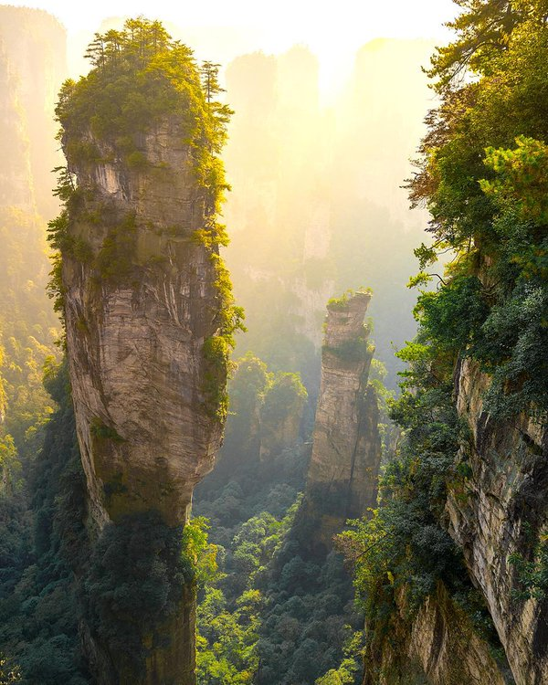 Tall stone towers in Zhangjiajie National Forest Park, China | Photography by ©phototravelnomads https://t.co/wcFcZOUwhN