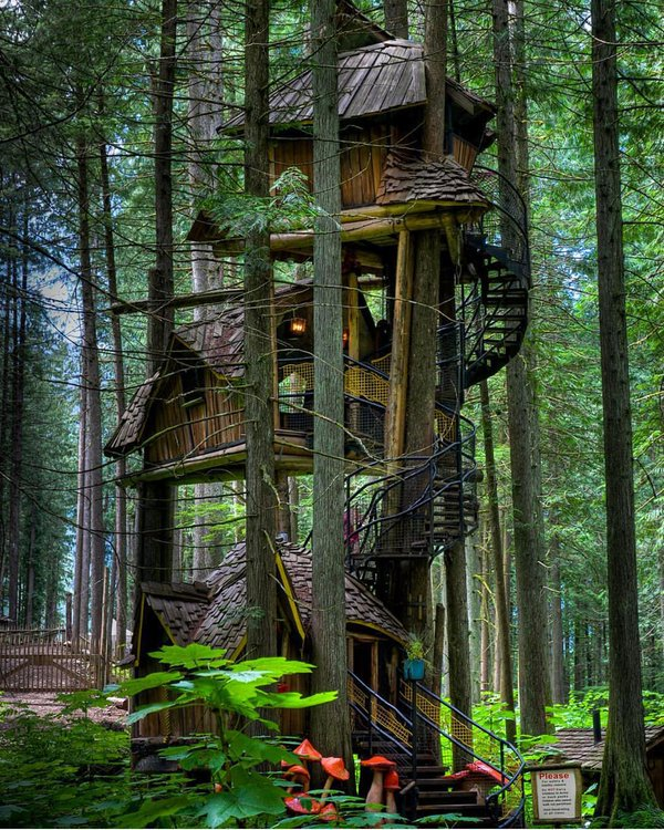 Tallest tree house in British Columbia, Canada | Photography by ©Keith Watson https://t.co/Ty6q78JDMi
