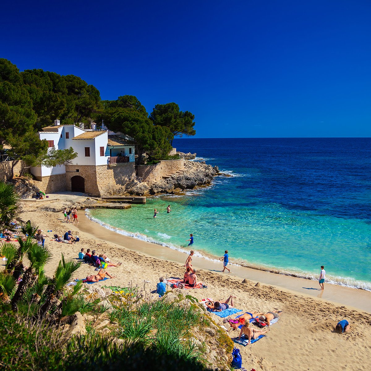 Free next week? Head to Majorca this Sunday with @BarrheadTravel from £447pp all inclusive!