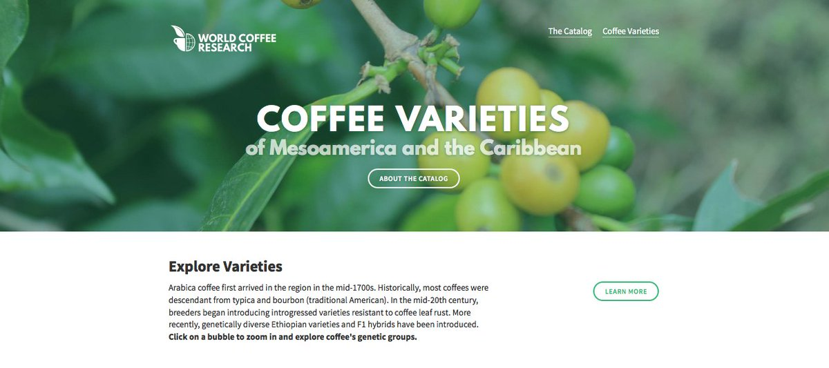 *BREAKING* Coffee Varieties of Mesoamerica and the Caribbean *launches today* https://t.co/CcyzYEeTSc https://t.co/mIfpfiTXvZ
