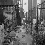 『路地裏の洗濯物』#写真撮ってる人と繋がりたい#写真好きな人と繋がりたい#ファインダー越しの私の世界#写真 #カメラ #