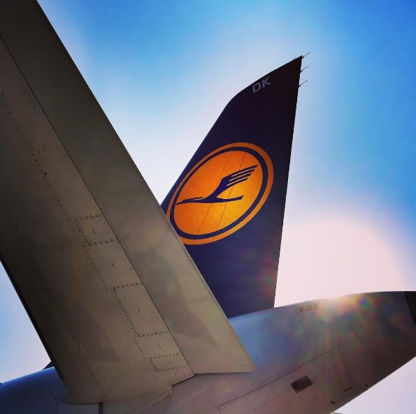 Tails are up and the sun is out - we're ready to fly! Photo: