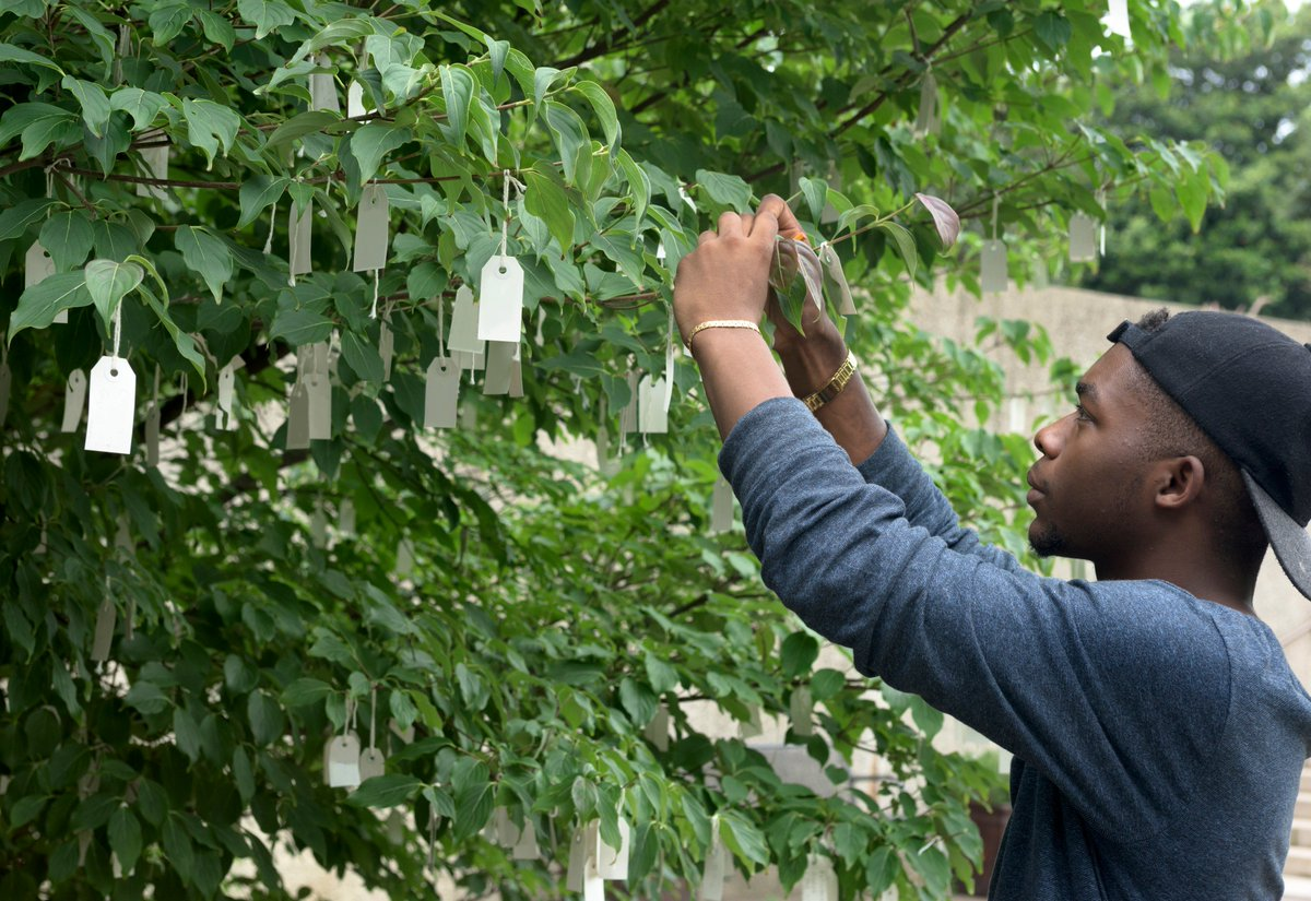 ".@yokoono's ""Wish Tree for Washington, DC"" opens for the season July 1! Share your wishes! https://t.co/y9ldT50lXU https://t.co/IuSop780UI"