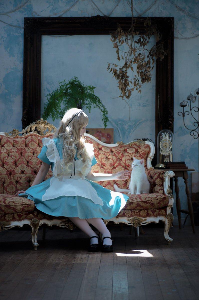 しらほなつみさんの写真とつぶやき:~Alice~  What road do I take?  photo:まさむー(@ryoichiyoko ) studio:Lumiere'k(@_Lumiere_K ) special thanks♡シャルロット https://t.co/8yYtAoUVW5