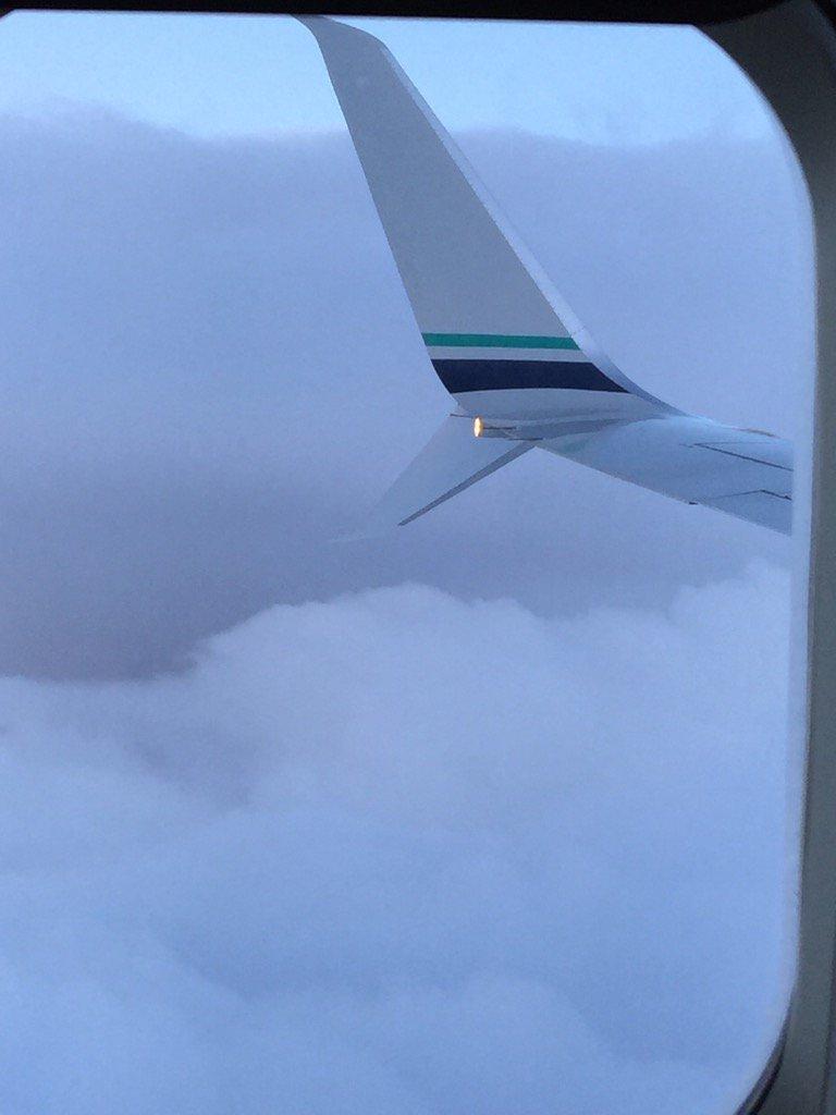 A beautiful sight in flight!!! @AlaskaAir #aviation https://t.co/jTejRGZNu1