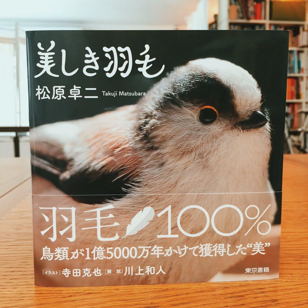 つ…遂に完成しましたよ、美しい鳥の羽だけで構成された松原卓二さんの写真集『美しき羽毛』東京書籍刊。FMスクリーンで羽の細部が何処までも何処までもビシィぃぃぃぃぃっと美麗に刷り上がった羽毛100%の本です。ルーペで是非見て欲しい https://t.co/lDDiOsUYVN