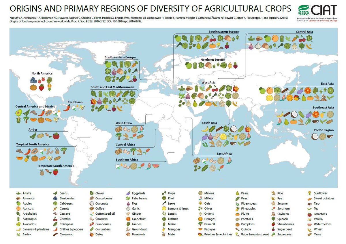 Where food crops come from around the world – a series of interactive maps https://t.co/wuy8nNyGjc via @CIAT_ https://t.co/pHAsn6Gb1G