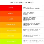 The Seven Stages of Brexit #EURefResults https://t.co/deLKQP45br