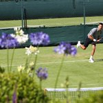 Novak Djokovic will open the defence of his #Wimbledon title against British No.5 James Ward https://t.co/WgAH510gWr