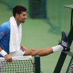 DJOKOVICS POSSIBLE PATH 1R J Ward 2R Mannarino 3R Querrey 4R Ferrer  QF Raonic SF Federer F Murray #Wimbledon https://t.co/tPErzWFR2j