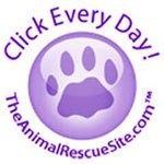 CLICK TO GIVE daily to #help shelter #pets for #FREE https://t.co/srXKOranCD     #dogs #cats @TheAnimalRescue RT! https://t.co/VDEScjxgry