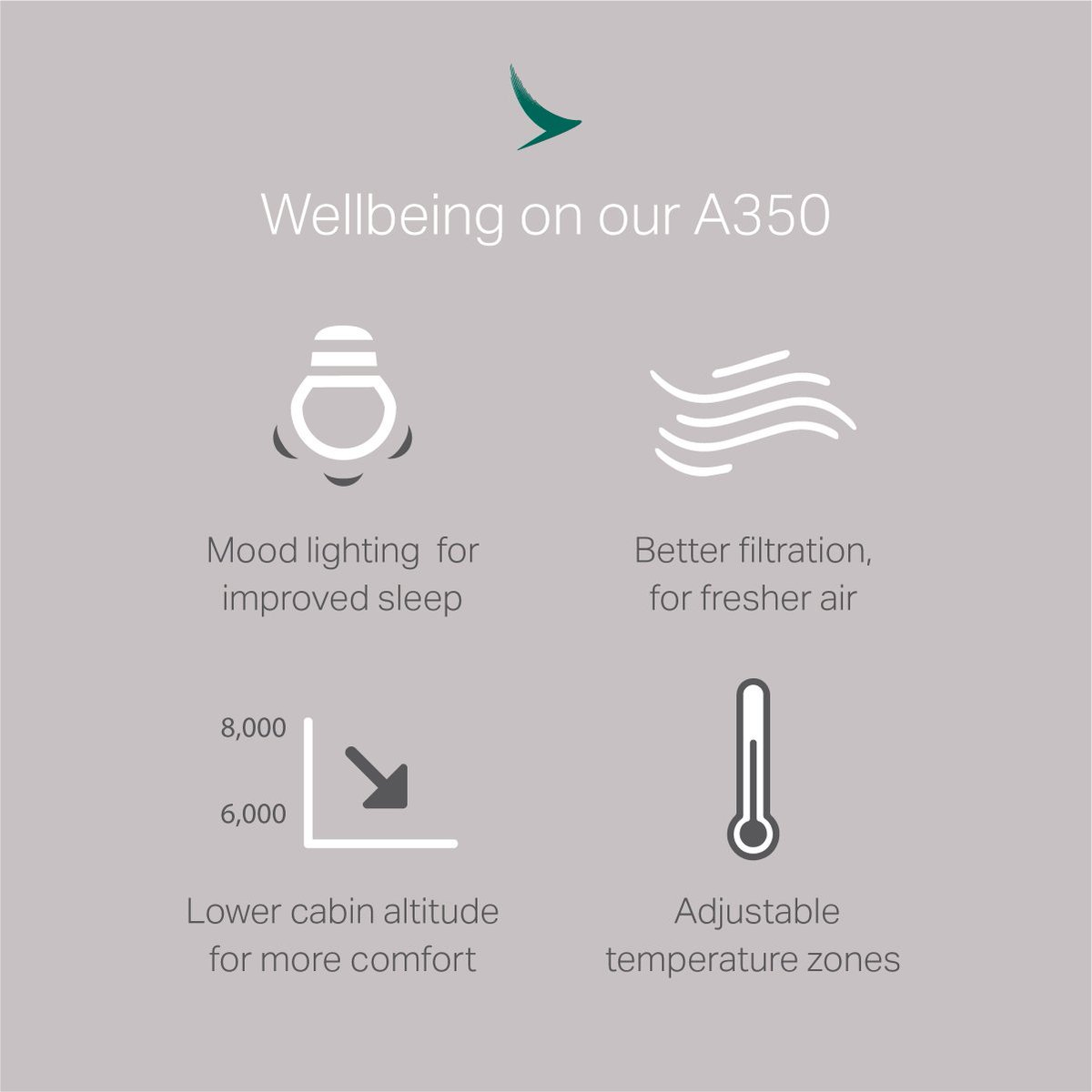 The A350 is focused on your well-being. Learn more about it from @NZStuff here: