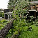 Cindy Lane sent us this picture of her backyard after the storm in Lynchburg. https://t.co/YO0j8CE8u7