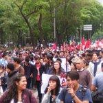 Da inicio marcha partiendo del Ángel de la Independencia hacia el Zócalo https://t.co/EsqeMZ0Kli
