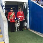 Look whos ready to lead the team out LCpl Derby XXIX #ChallengeCup #armedforces https://t.co/Jri6eZTmNj