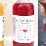 This Catnip Wine Lets Your Cat Be Your New Drinking Buddie https://t.co/WDI35dfene https://t.co/uPikMT9PkZ