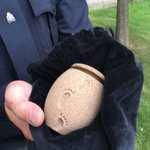 #edmonton #yeg Sgt. Sharpe trying to find owner of infant urn recovered during traffic stop in #yeg in Dec 2015 https://t.co/7r0kK7p6bn