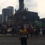 Maestros de la #CNTE alistan una marcha del Ángel de la Independencia al Zócalo capitalino. https://t.co/Dm8EBQeCtl