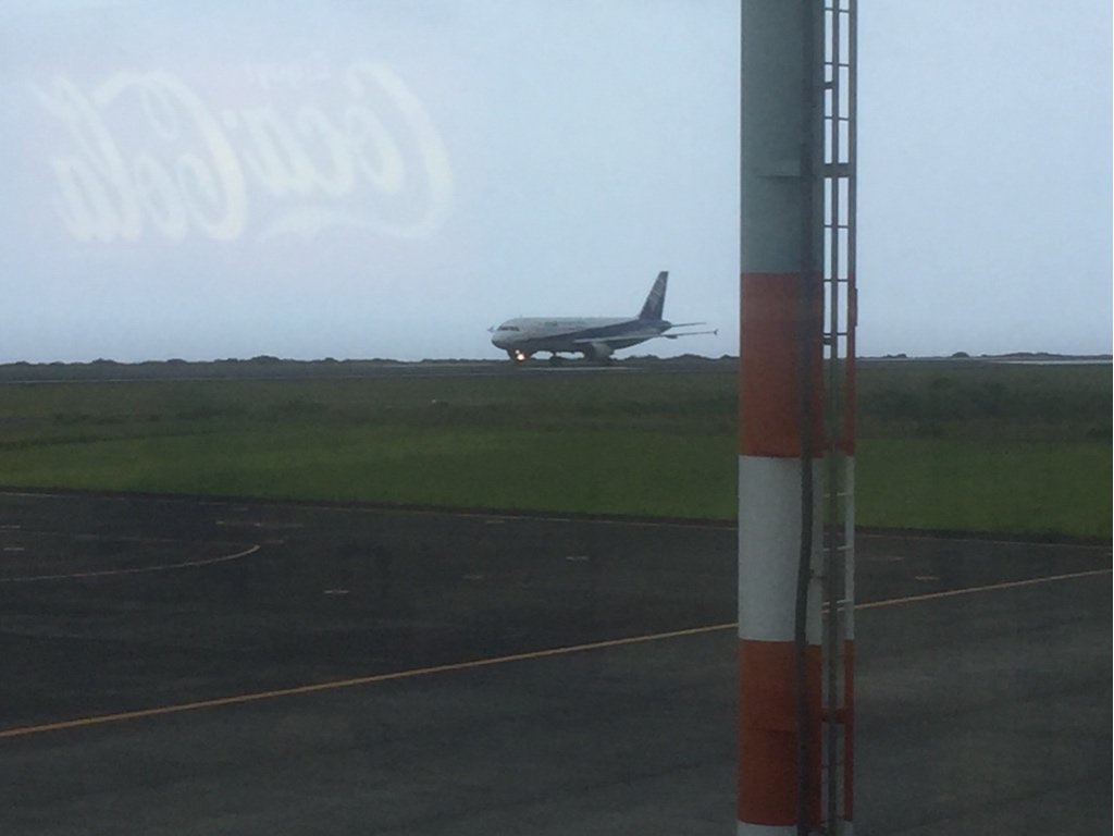 うおおおお!!羽田からの飛行機が無事に八丈島に着陸!!希望の星!これで本土に戻れるんだ・・・。 https://t.co/lqo1UEyTgn