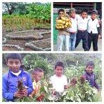 ¡Avanzamos con una transformación positiva, unidad y promoción de seguridad alimentaria con los huertos escolares!! https://t.co/uT17w4ljZE