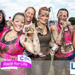 Lets take the fight to CANCER! Sign up for #Harrogate @raceforlife now https://t.co/VGWDbYzK7M with @LookersSKODA https://t.co/OzGSwNoSpb