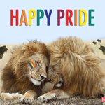 Have a wonderful #Pride2016 https://t.co/AtpU5djPiZ