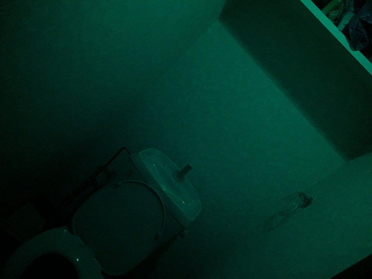 トイレの電球を交換したら色を間違えたらしくバイオハザードに出てくるような雰囲気のトイレになった。 https://t.co/PnHQASrsvA