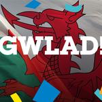 Goosebumps. CMON CYMRU! #WAL #Euro2016 #WALNIR #ItsOurTime https://t.co/v9I2SpuK7m