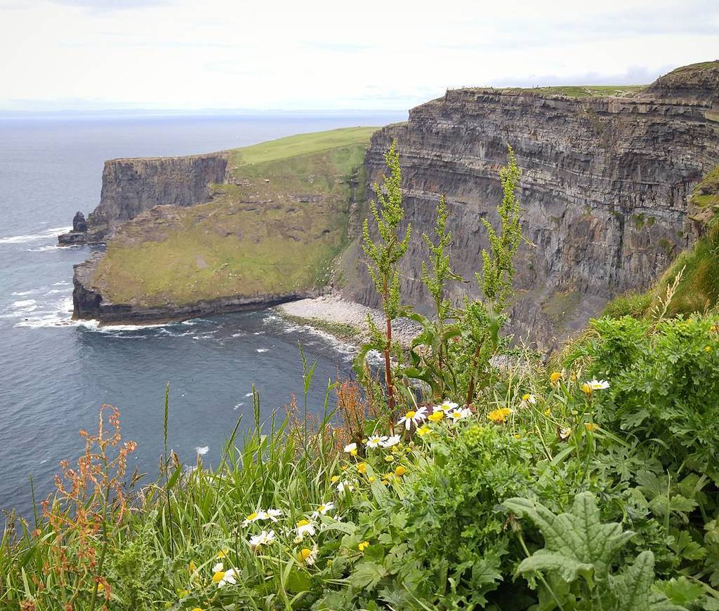Here's another one from the spectacular Cliffs of Moher. The landcapes on the Wild Atlantic Way are invredible. https://t.co/K052oVQmwM