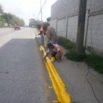 Trabajando por una mejor #SPS, Personal de Ornato realizo buen trabajo de pintado en el Bulevar del Sur. #SPSAvanza https://t.co/OVDUFlUXR9